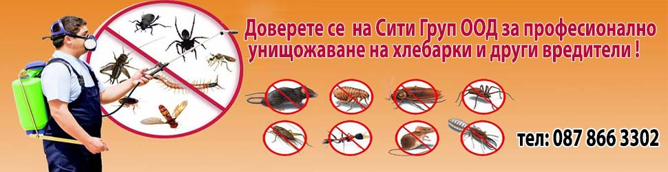Доверете се на професионална на Сити Груп ООД  за унищожаването на хлебарките!